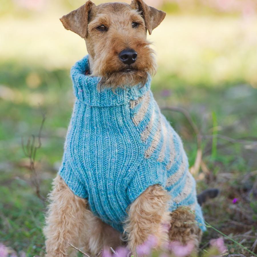 Terrier Donegal Striped Jumper Kit