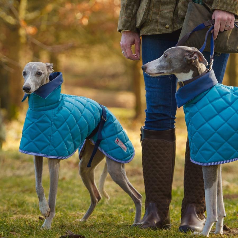 Sussex Washable Hound Coats - Turquoise