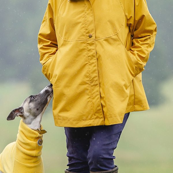 Chiltern Coat in Yellow, front detail