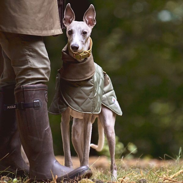 whippet coat in washable fabric