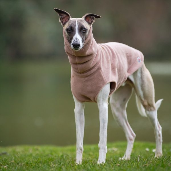 Fleece for Whippets in Camel (Limited Edition)