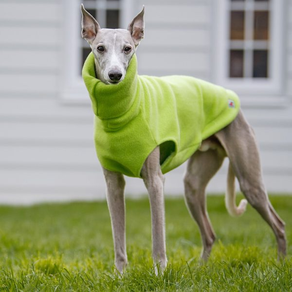 Fleece for Whippets in Lime (Limited Edition)