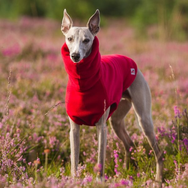 Fleece Jumper for whippets in Red