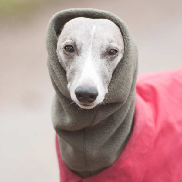 Fleece Snood for Whippets