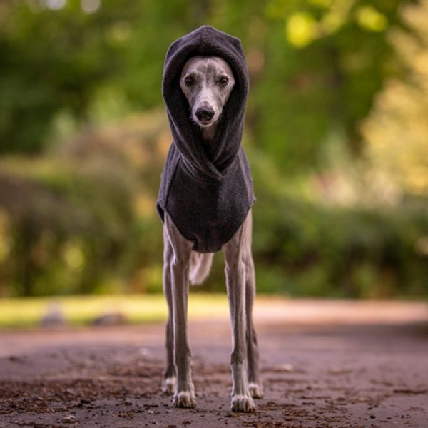 Fleece Hoodie for Whippets in Charcoal