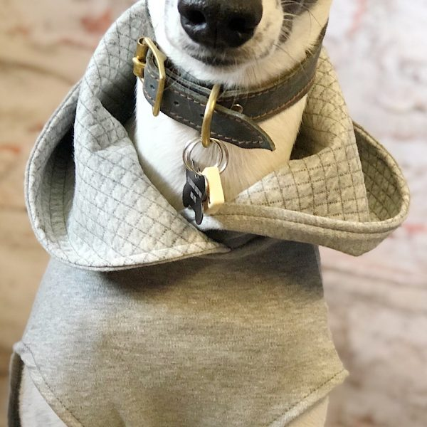 Hoodie Tee Shirt for Whippets in Grey