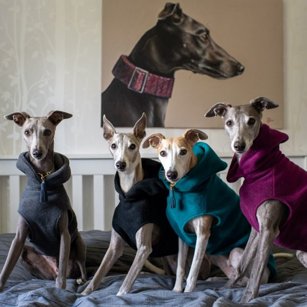 Fleece Hoodie for Whippets in Charcoal, Black, Teal and Plum (l-r)