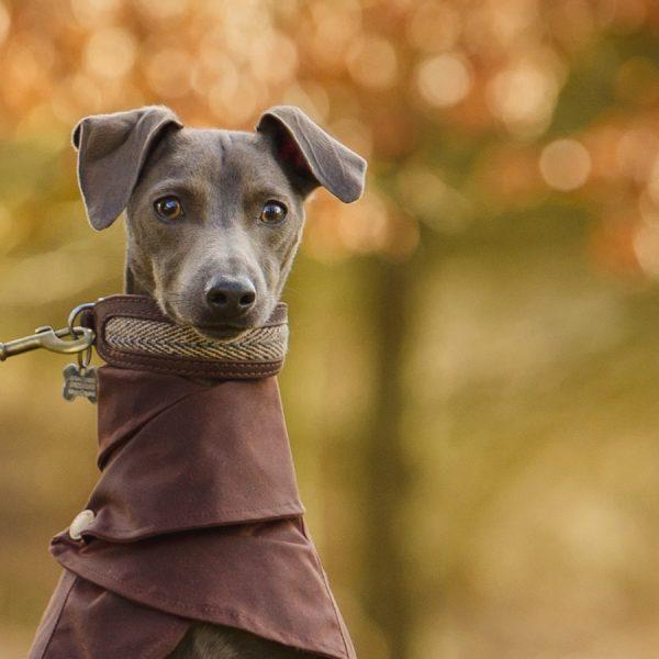 Brown Wrap Around Coat