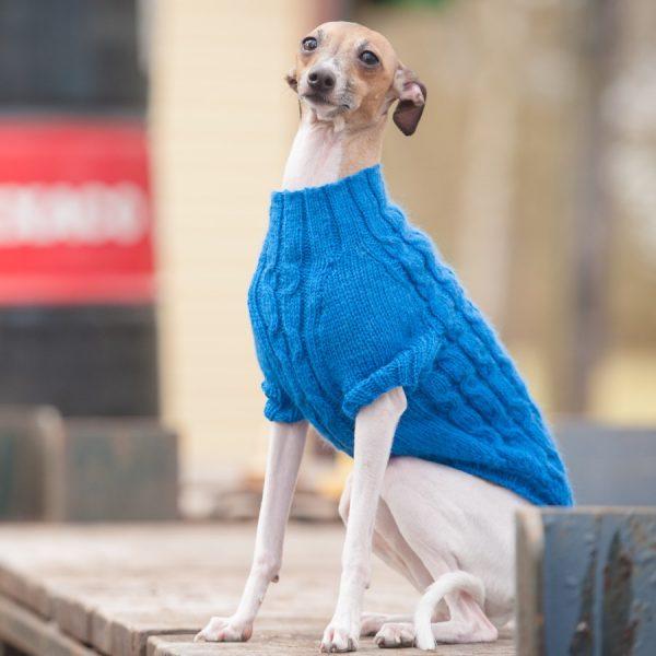 Italian Greyhound hand knitted jumper