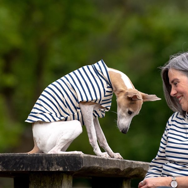 Navy & Ecru Striped Whippet Tee with Short Collar