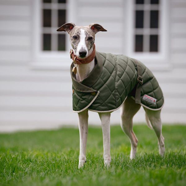Norwich Washable Harness Hole Coat in Green