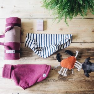 Puppy Pack 3-6 months: contains a fleece, striped tee, training treats, eco toy and and comfy patchwork blanket