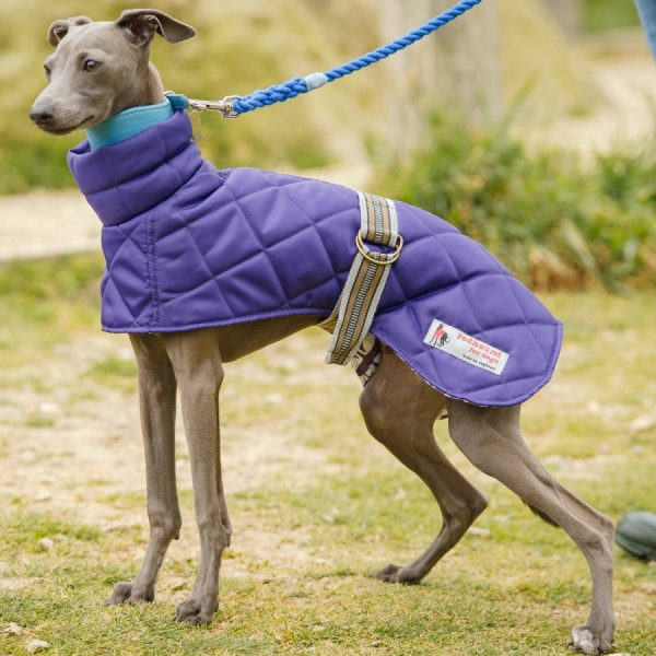 Lightweight sight hound coat