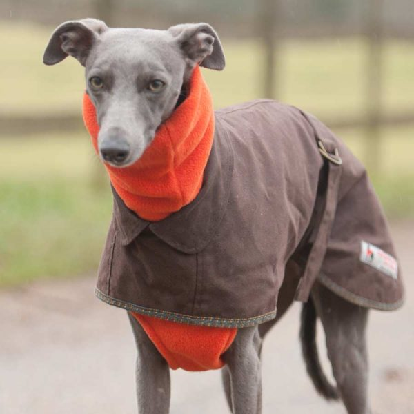 Fleecy Snood for Long Necked Dogs