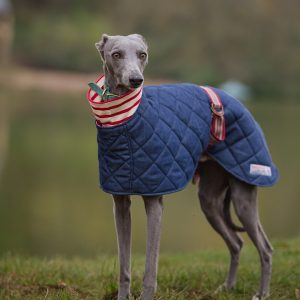 Richmond Whippet Coat in Quilted Denim with Cotton Lining