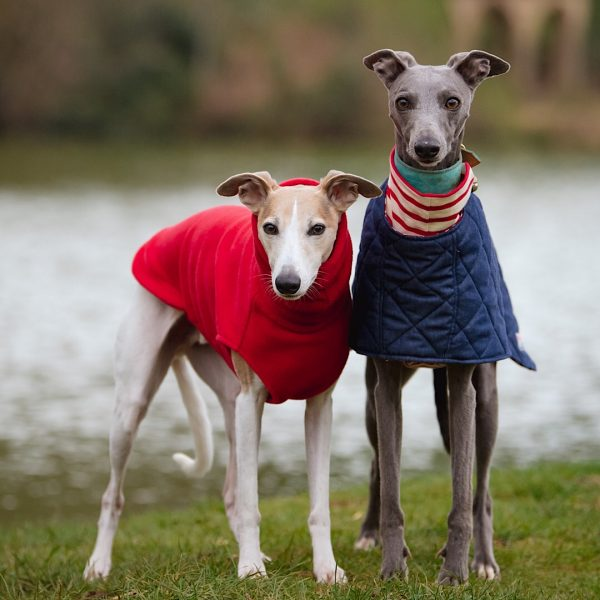 Richmond Whippet Coat can be layered with our Striped Tees, Fleeces or Snoods
