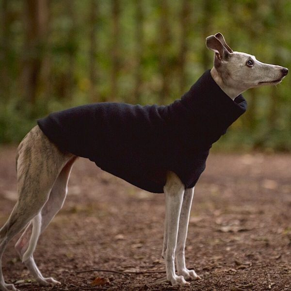 fleece jumper for whippets
