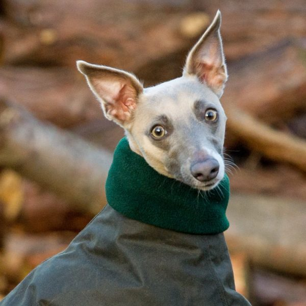 whippet snood green