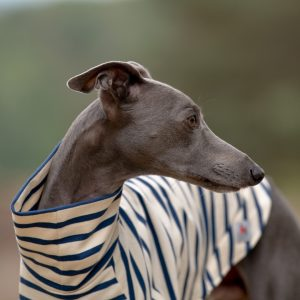 Stripe Tee for Whippets in Navy & Ecru