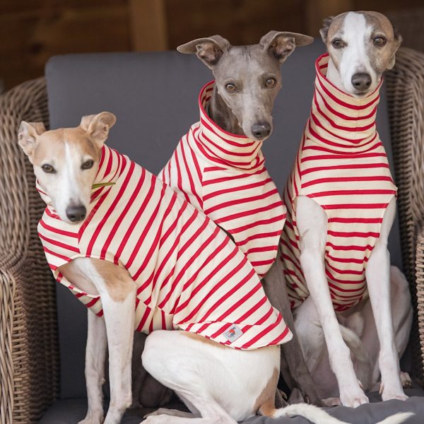 Stripe Tee Shirt for Whippets in Red