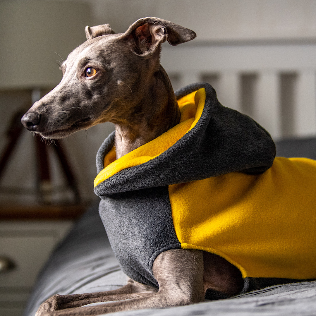 Two Tone Hoodie Fleece for Whippets Redhound For Dogs