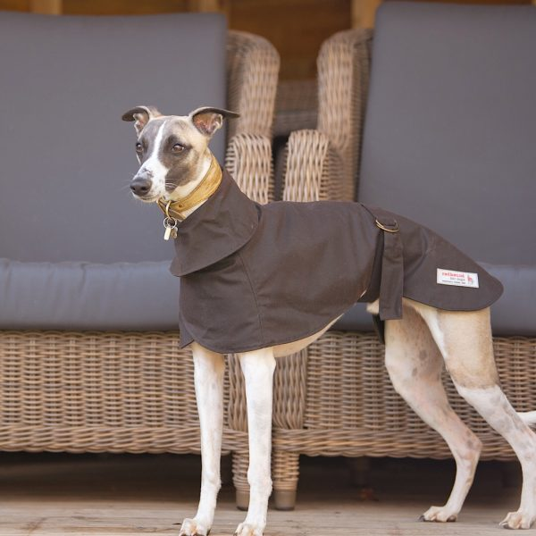 Wax Cotton Wiltshire Whippet Coat in Brown