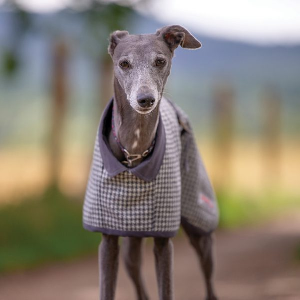 York Houndstooth Wool Coat from the City Collection