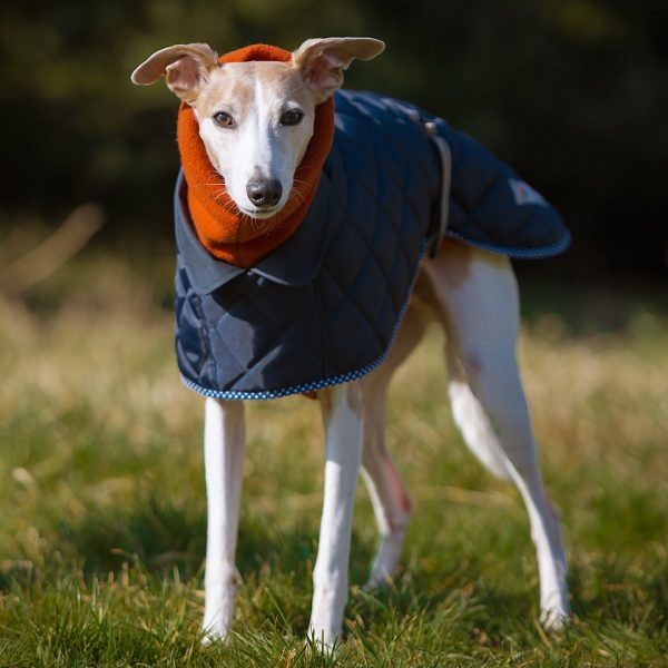 Yorkshire Coat in Navy layered with Terracotta Fleece