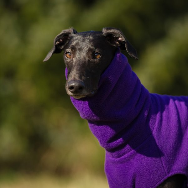 Fleece jumper for greyhounds