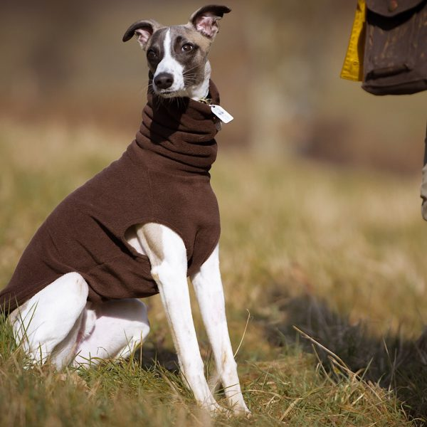 Fleece Jumper for Whippets in Brown