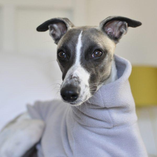 Whippet Fleece in Light Grey