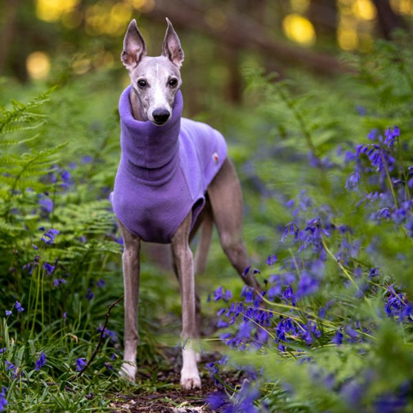 Fleece Jumper for Whippets in Lilac