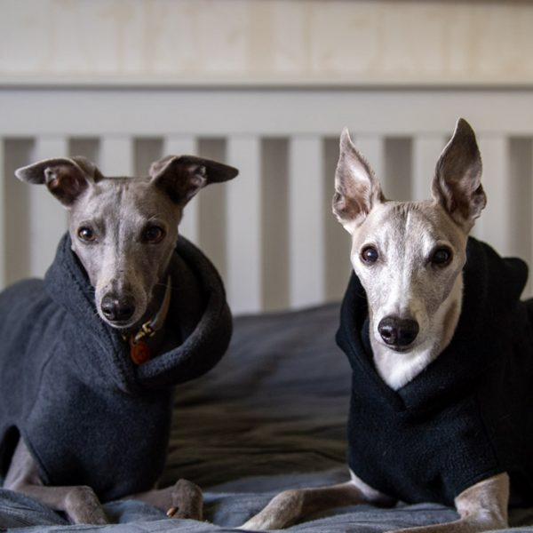 Hoodie Fleece for Whippets in Charcoal (left) and Black (right)