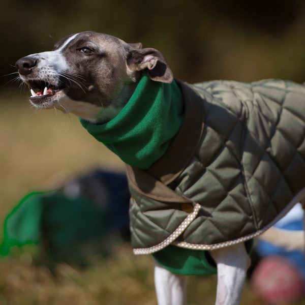 quilted washable whippet coat