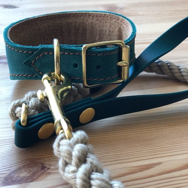 Rope Lead with Biothane Handle and Leather Collar in Green