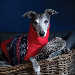 Christmas Jumper with Turtle Neck in Festive Red