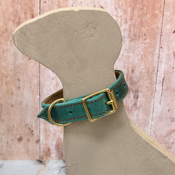Puppy's First Collar in Green