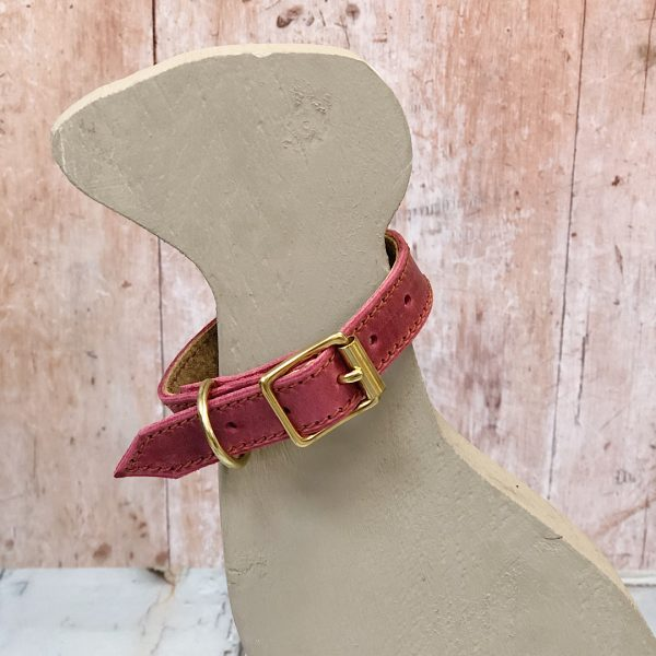 Puppy's First Collar in Raspberry