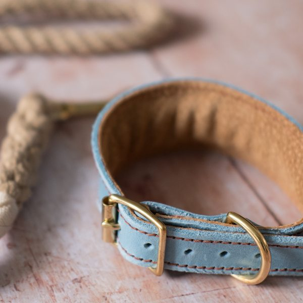 Leather Collar for Hounds in Blue