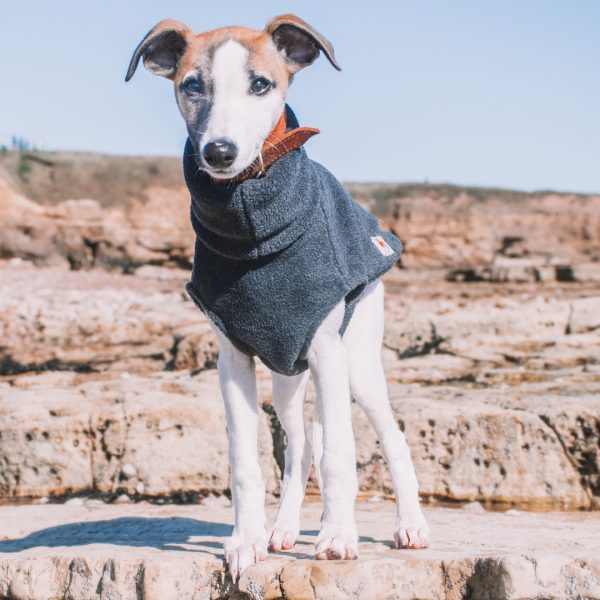 Puppy's First Fleece in Charcoal with Puppy's First Collar in Jaffa