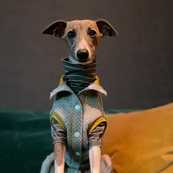 Quiltee Gilet in Grey & Ochre layered over a Legged Jersey Tee in Graphite Sleek Stripe